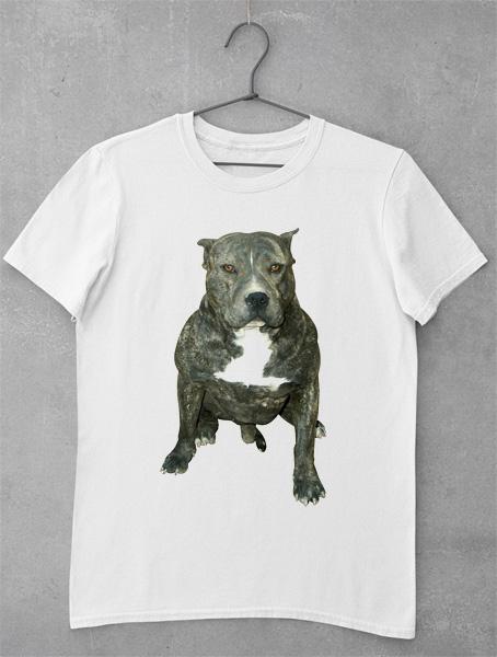 tricou pitbull