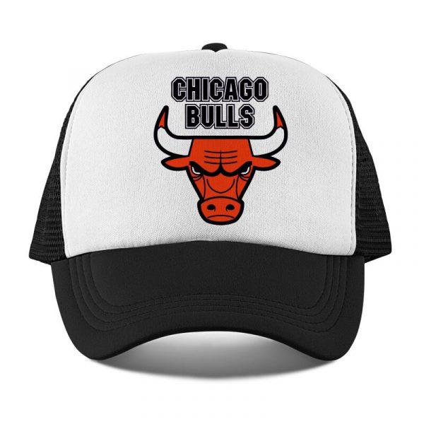 sapca chicago bulls